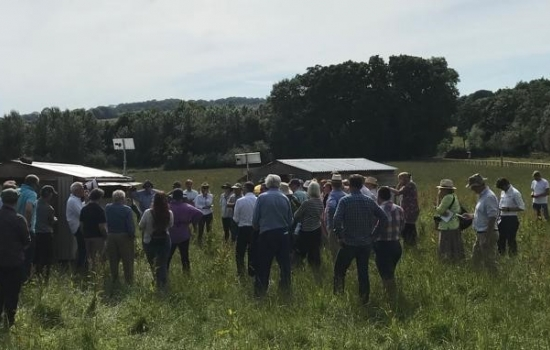 A group of people standing in a farmers field