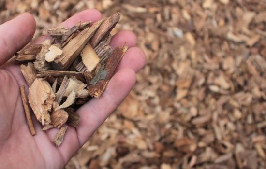 Woodchip in a hand with more in the background