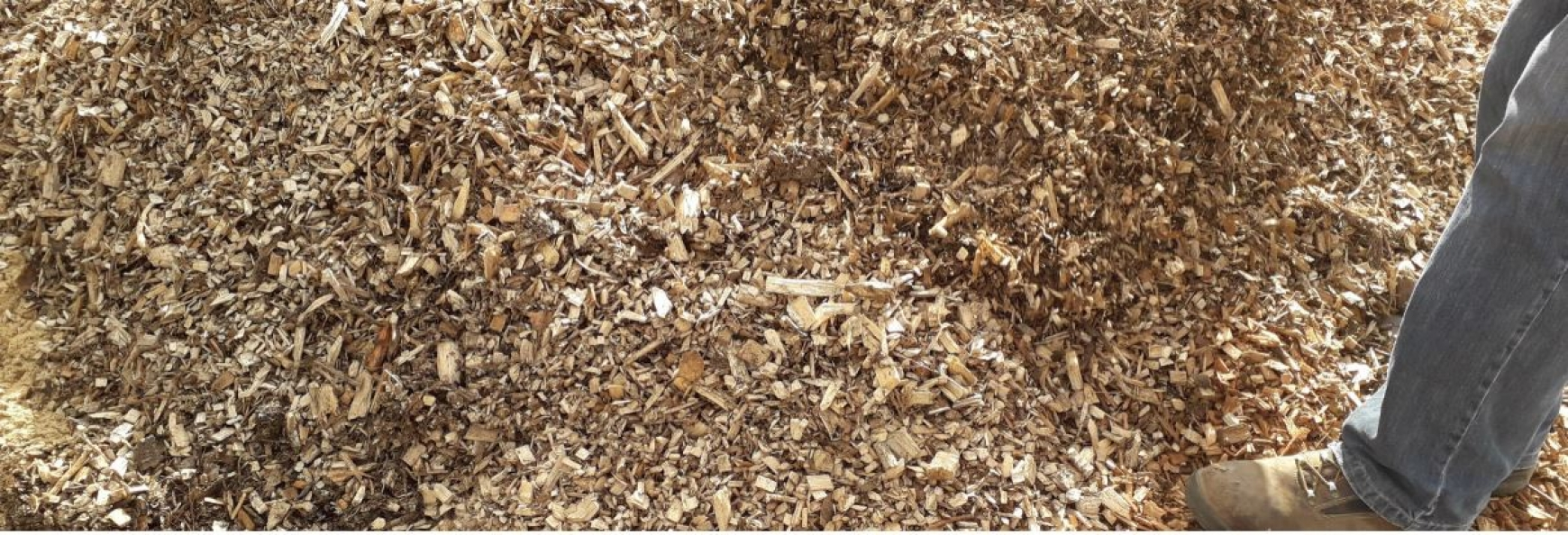 A close up on a pile of wood chip