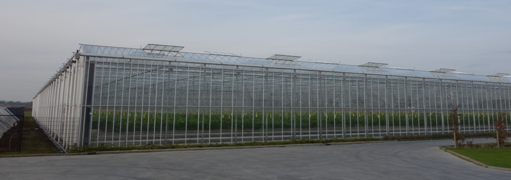 A greenhouse with its roof vents open