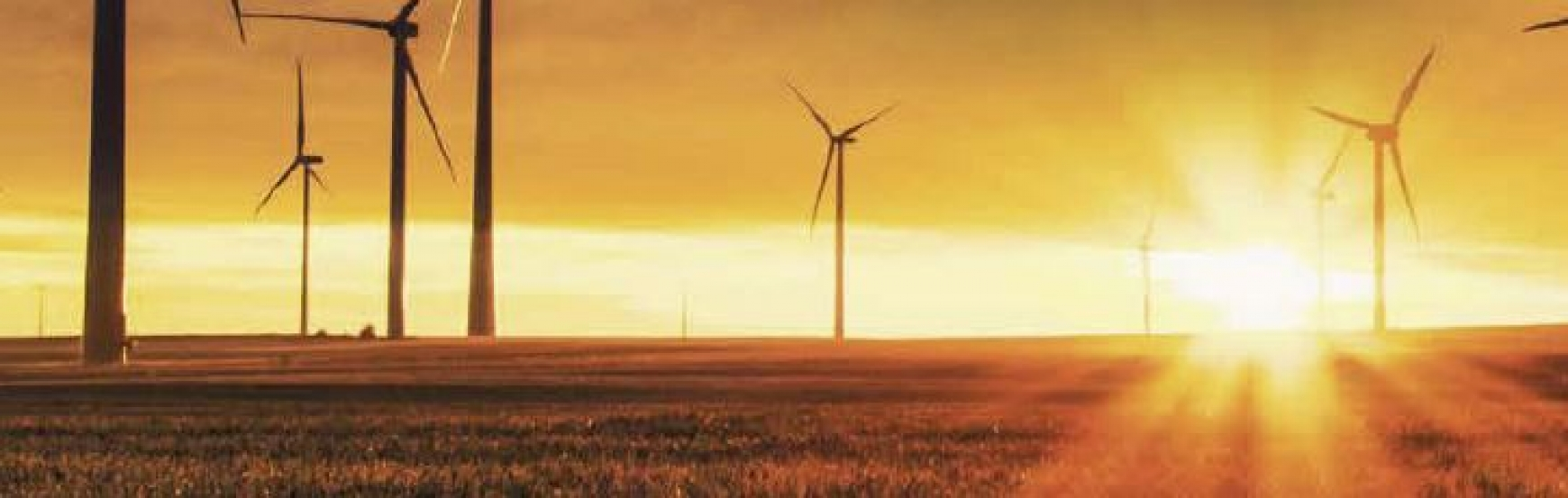 A wind farm in a field with a sunset behind