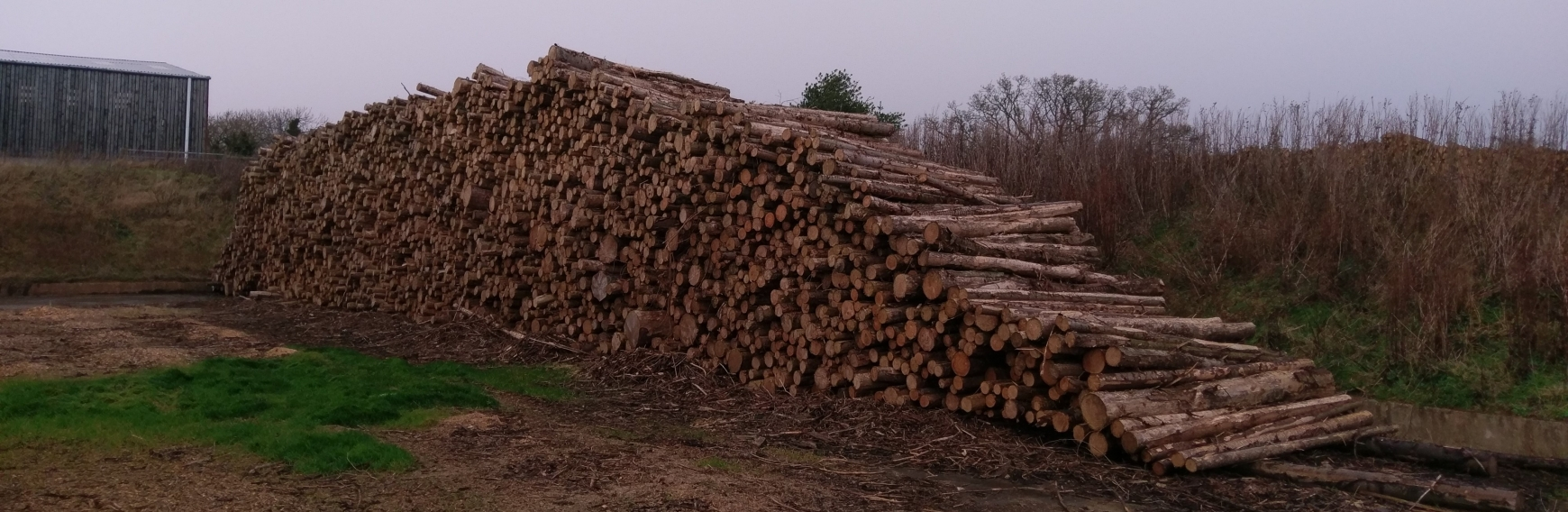 Stack of wooden logs with grey sky